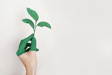 ESG als natürliche Dimension von Quality